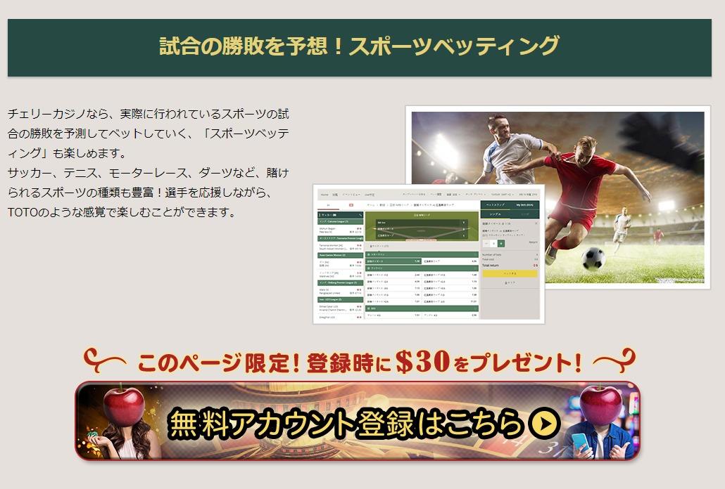 チェリーカジノ登録方法1